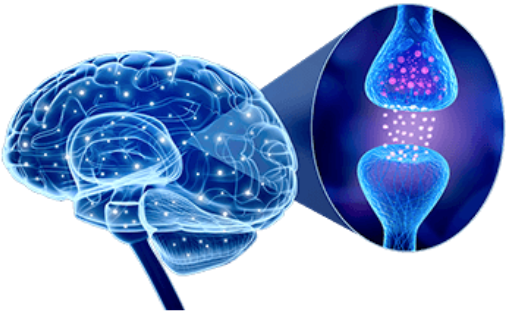 Advanced Memory Formula Ingredients